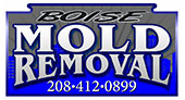 Boise Mold Removal