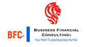 Business Financial Consulting
