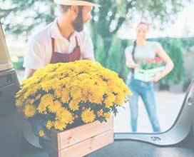 Flower Delivery Boca Raton