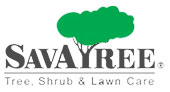 SavATree Tree Service & Lawn Care logo
